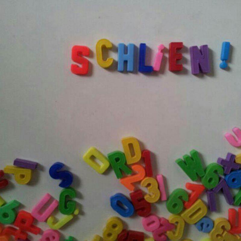 Schlien